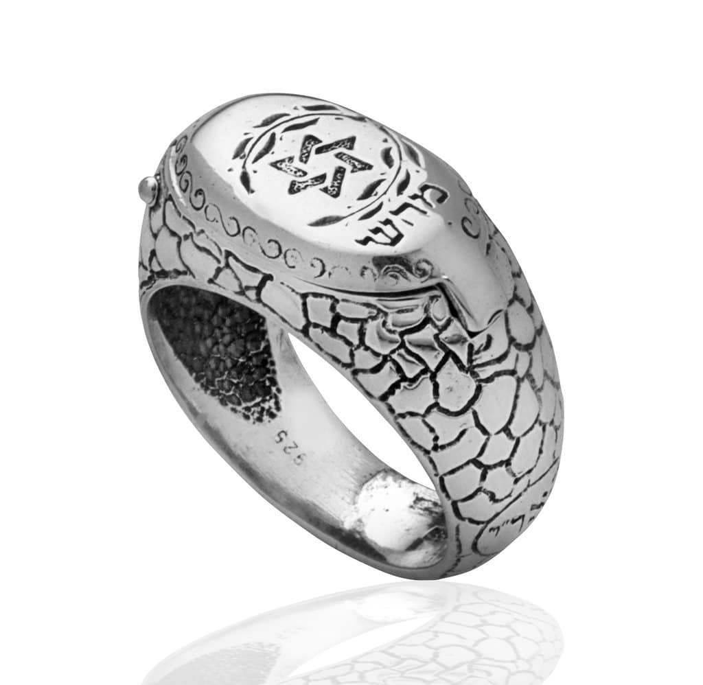 Silver Star of David  Snake  Ring