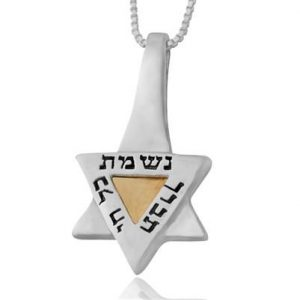 Sliver and Gold Star of David Necklace - Nishmat Kol Chai