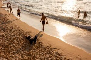 Tel Aviv's Beaches, Travel
