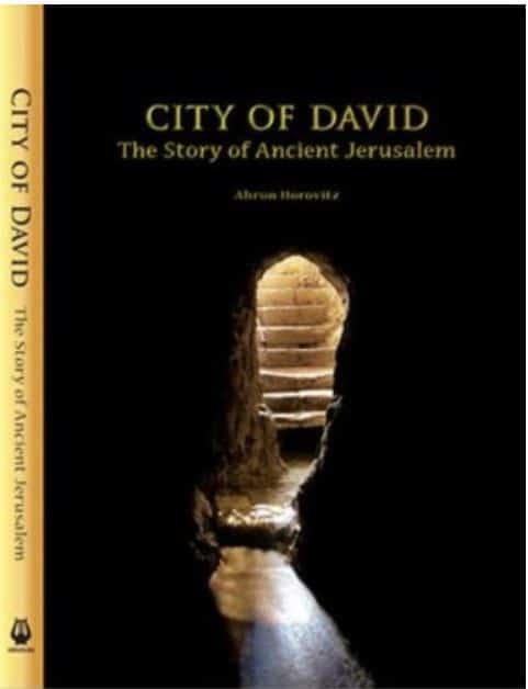 CITY OF DAVID / HOROVITZ