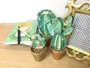 Trio Decorative Cactus