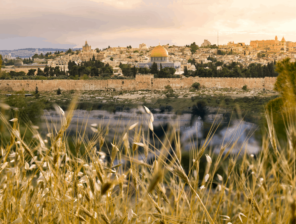 Shavuot Holiday – Everything You Need to Know